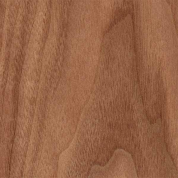American Black Walnut