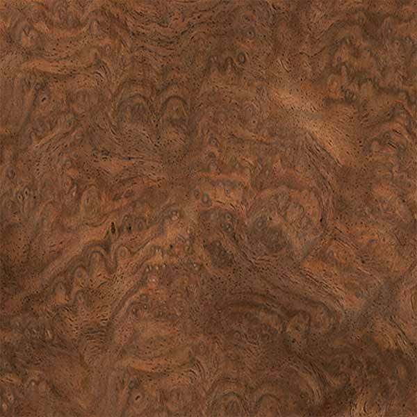 Burr Walnut, European