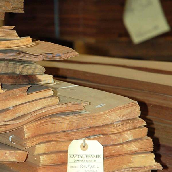 Wood Veneers Selection